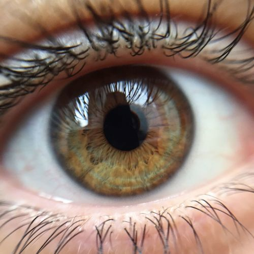Eye Eyeseeyou Maximum Closeness My Best Photo