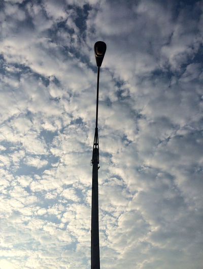 one small bird hugs the light pole as morning begins. frustration is nigh. Atmosphere Bird Cloud Cloud - Sky Clouds Cloudy Light Low Angle View Morning Morning Light Morning Sky Outdoors Pole Silhouette Sky Street Light