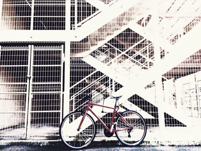IPhone Photography Cycling 誰かの バイク