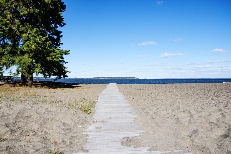 Surface level of calm beach against blue sky