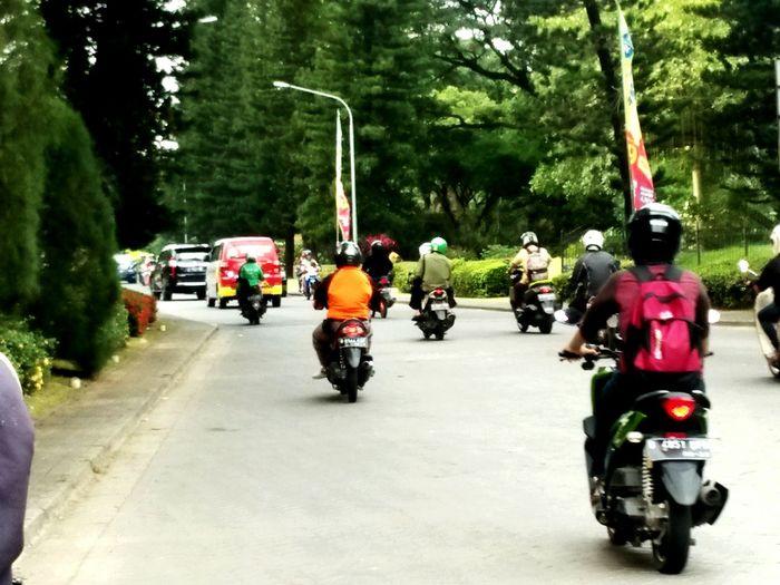 kemang pratama Tree Motorcycle Headwear Road Real People Men Only Men Outdoors People Day