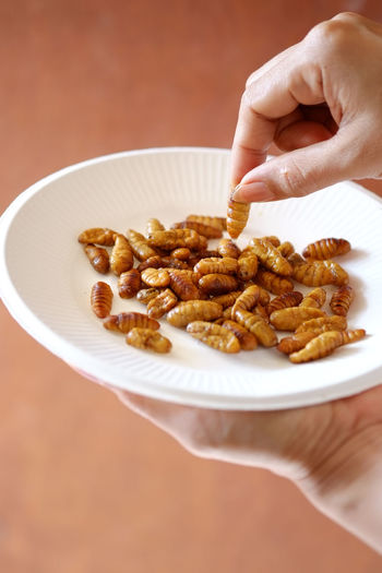 Cropped image of woman holding roasted silkworm over plate
