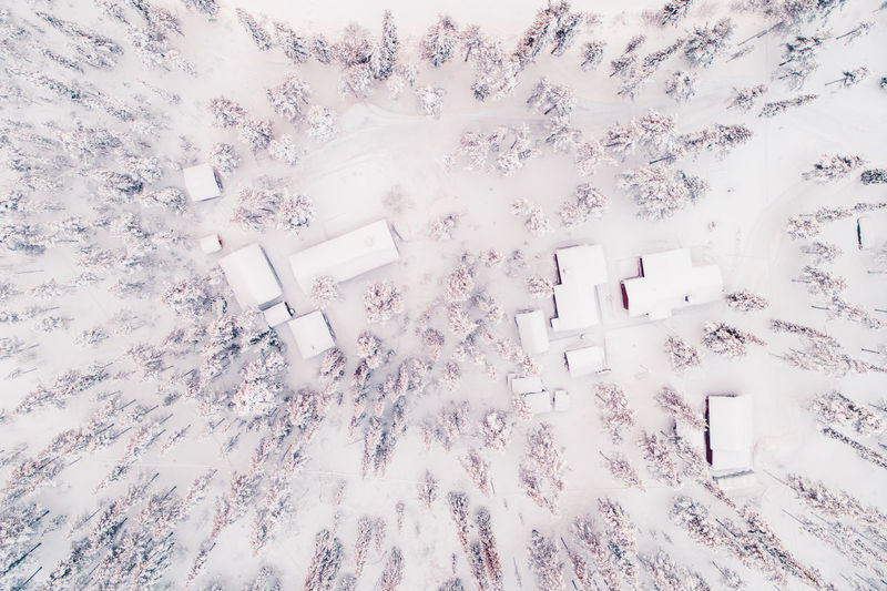 Aerial view of trees and houses on snowcapped field during winter