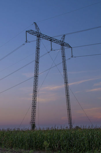 Electric pylon rising from the field Cable Electricity  Electricity Pylon Field Fuel And Power Generation Low Angle View Metal No People Outdoors Plant Power Line  Power Supply Sky Sunset Technology