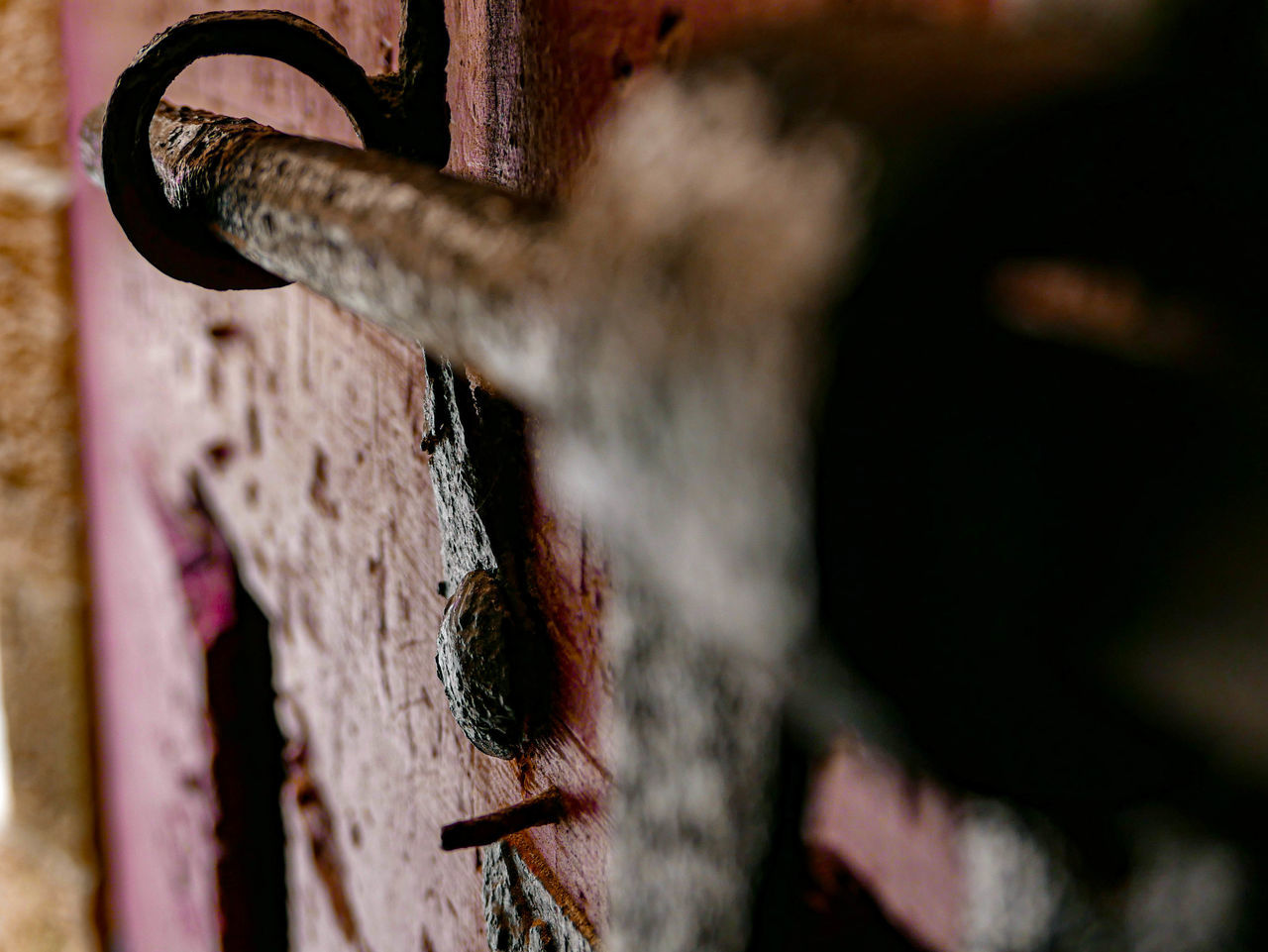selective focus, close-up, no people, metal, day, rusty, old, wood - material, outdoors, focus on foreground, nature, textured, damaged, safety, weathered, run-down, detail, pattern, sunlight