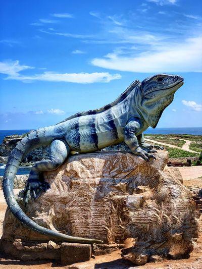 Giant Lizar