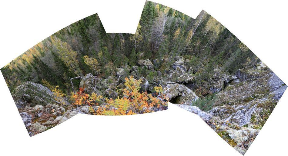 Rocks Kalliot Repouuro Luonto Nature Koli Wood Fall Colors Ruska