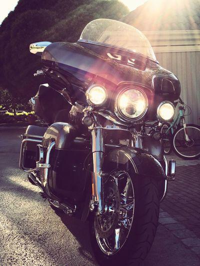 Harleydavidson Motorcycle