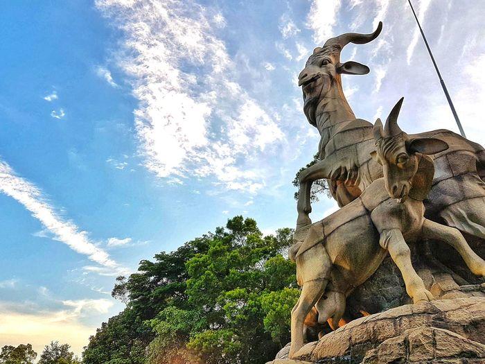 Canton Stone Five Rans Yuexiu Park, Guangzhou Yuexiu Mountain Galaxys7