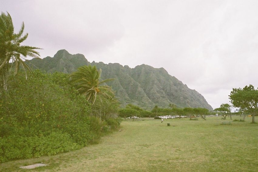 Kualoa Ranch Contaxg2 Hawaii
