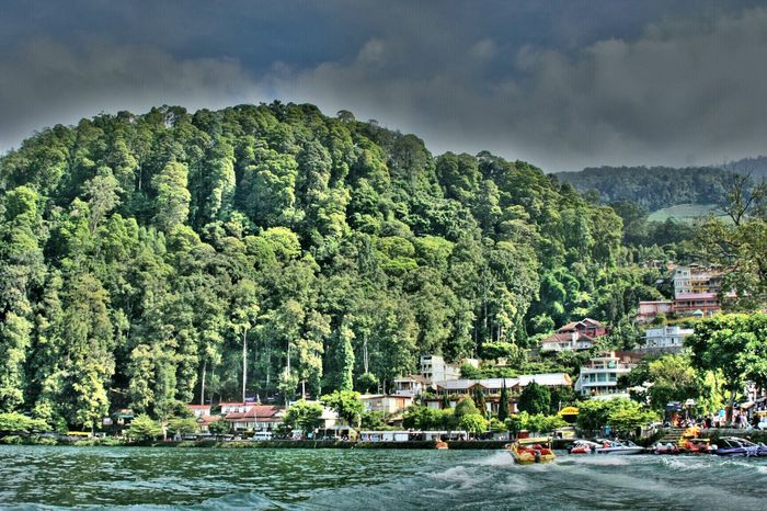 beautiful place in Indonesia --Sarangan Lake, East Java. Come to visit :) EyeEm Best Shots - Nature Canon HDR EyeEm Best Edits