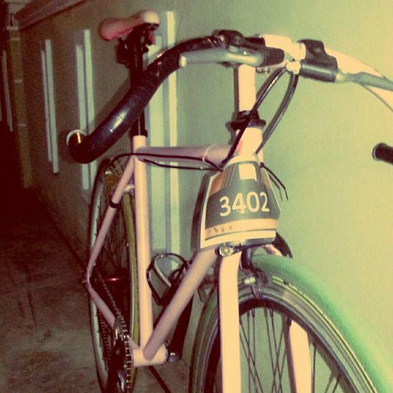 On Your Bike ʀɨɖɛ ʄʀɨɛռɖs ċʏċʟɨռɢ ʍօʀռɨռɢ Enjoying Life