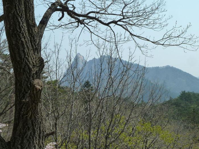 NatureReserve Sunny Beauty In Nature Day Landscape Mountain Mountain Range Mountains Nature Outdoors Scenics Soraksan Southkorea