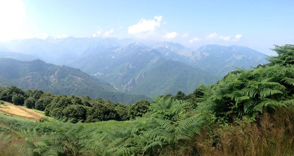 Landscape of Alpes First Eyeem Photo