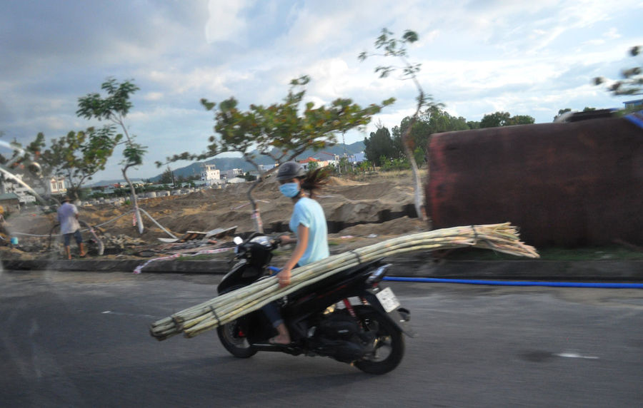 Girl with load of sugarcane on the back of her motorbike in Da Nang, Vietnam. Casual Clothing Cloud Da Nang Editorial  Facemasks Loads Long Hair Motorcycles On The Move Riding Road Sky Speed Transportation Trees Vietnam Young Adult