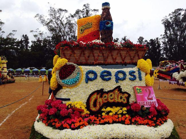 Panagbenga Panagbenga2016 FlowerFestival Cheetos Pepsi