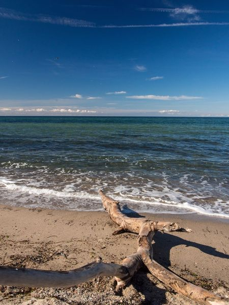 """Landscapes With WhiteWall """"mein"""" Strand EyeEm Best Shots Beachphotography Beach Baltic Sea Beautiful Day Ostseeküste Kühlungsborn Riedensee Ostsee Blue Wave"""