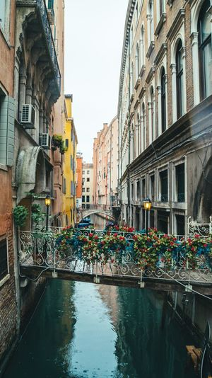 Another of Venice... Light And Shadow Architecture Building Exterior Water Canal Built Structure Day Outdoors Residential Building Travel Destinations No People Flower City Sky Gondola - Traditional Boat Nature Clear Sky