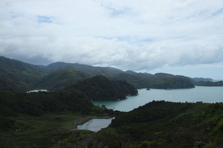 Abel Tasman - New Zealand - Nils Nowacki - 2016 #thiscouldbenewzealand Abel Tasman Abel Tasman Nationalpark Marlborough Sounds New Zealand NZ
