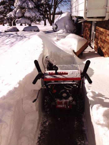 Winter Snow Michigan Wintertime Cold