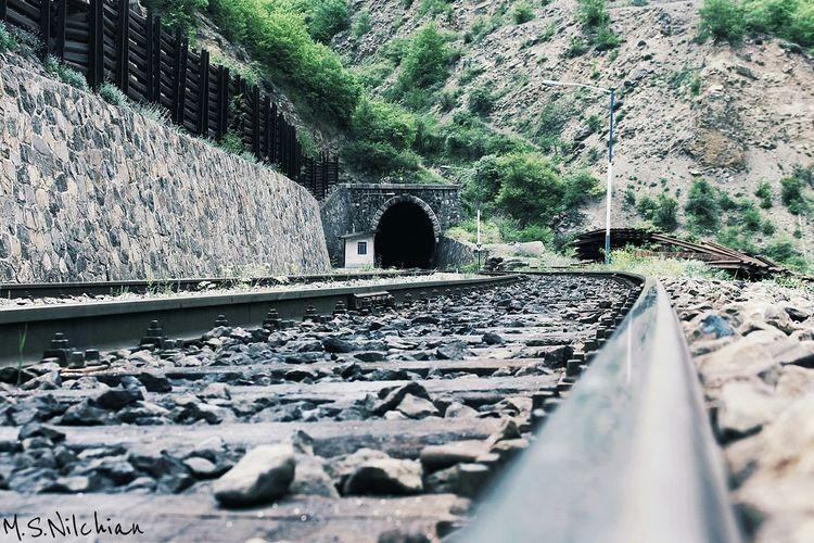 Railway Tunnel Rail Jungle Nature Train Iran Mazandaran