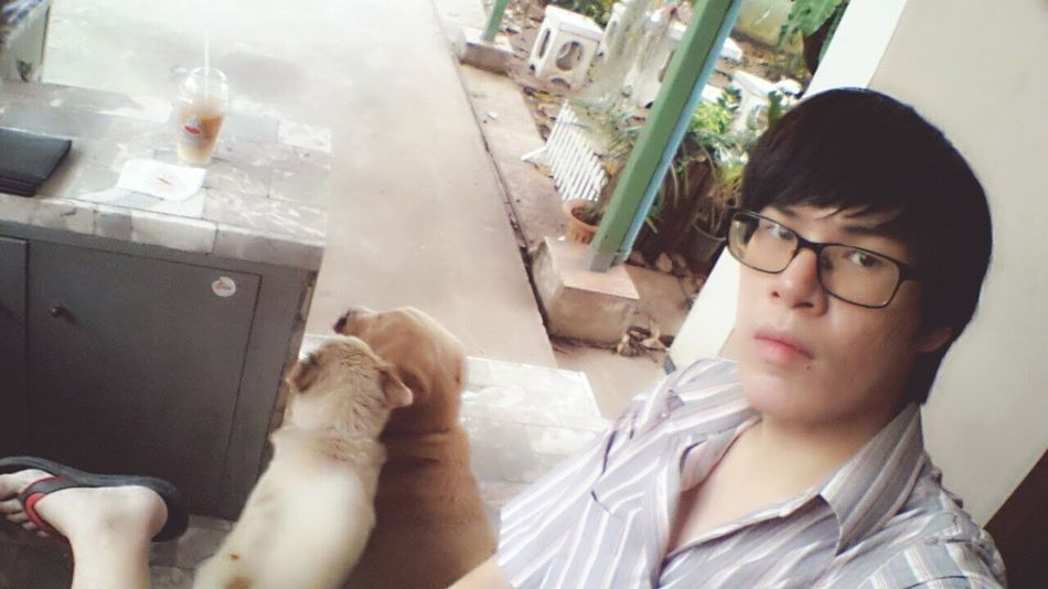 หมาแม่งแอบไปซุบซิบกัน ไม่รู้วางแผนอะไรกันอยู่ 😐😑😕 Dog Pet Pet13 Gold Friendship