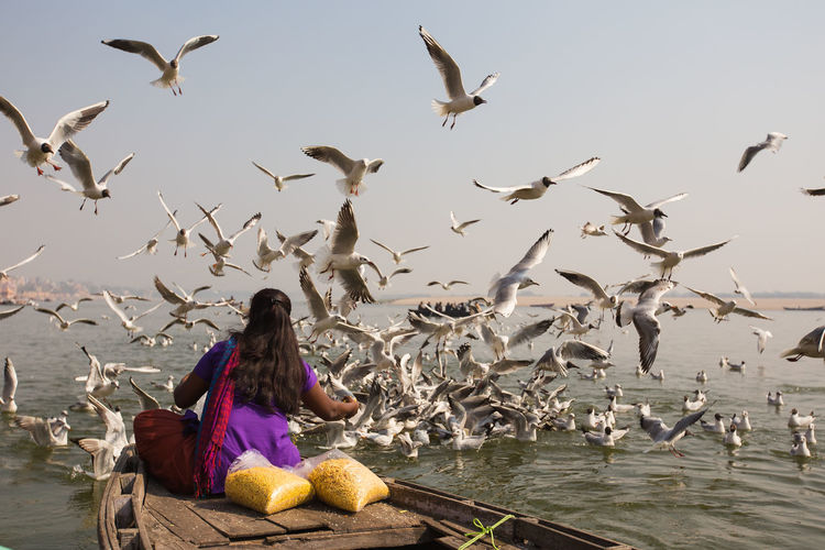 Rear View Of Woman Feeding Seagulls While Sitting In Boat At Sea