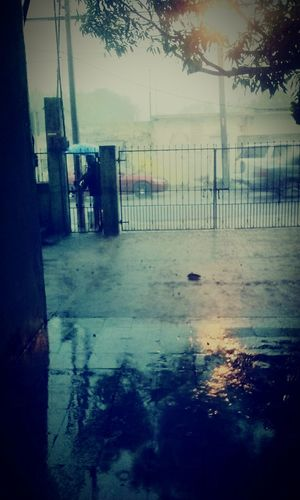 I love Rainy Days Taking Photos Check This Out Hanging Out
