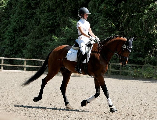 Dressage Headwear Sports Race Competition Horse Racing Sport Full Length Sports Helmet Jockey Riding Horseback Riding