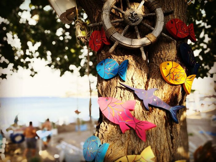 Close-Up Of Colorful Fish Shape Decorations On Tree Trunk
