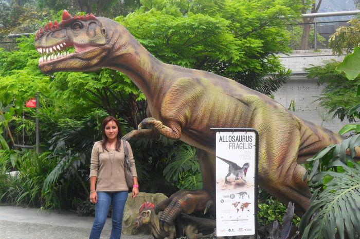 Creo que este fue uno de los mejores dias de mi vida! 💯✨ Hello World Enjoying Life Colombia Medellin DinoPark Perfect Day Awesome People! 👌