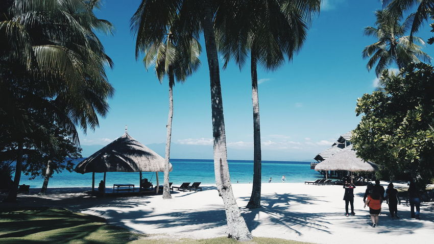Beach Summer Pearlfarm Resort Davao Island Eyeem Philippines