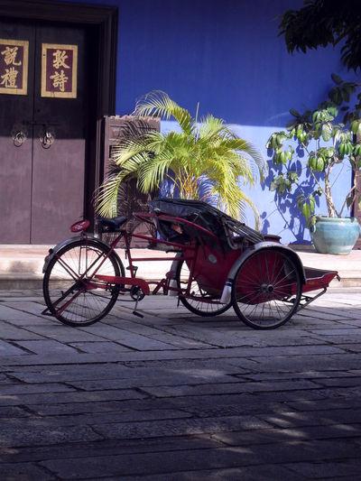 Trishaw #penang #penangheritage Tree Bicycle Water Sky Rickshaw