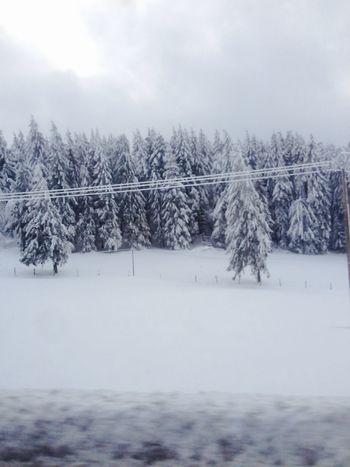 Magnifique weekend avec la famille dans les Vosges Vosges Hiver Neige Blanc