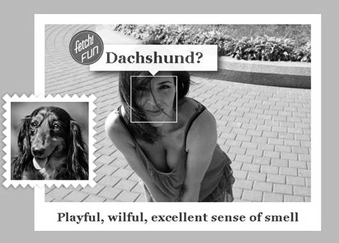 Yeah I chose the right dog 😊 WhatDogRobot That's Me Enjoying Life Blackandwhite Bw_collection Captured Moment Monochrome Four Legs And A Tail Having Fun Better Together Faces Of EyeEm Dogs Dachshund Dachshundlovers