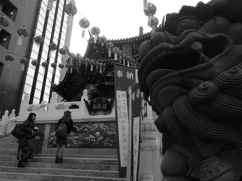 taoism lion Taoism TaoistTemple Chinatown Yokohama Built Structure Building Exterior Architecture Day Outdoors Statue City