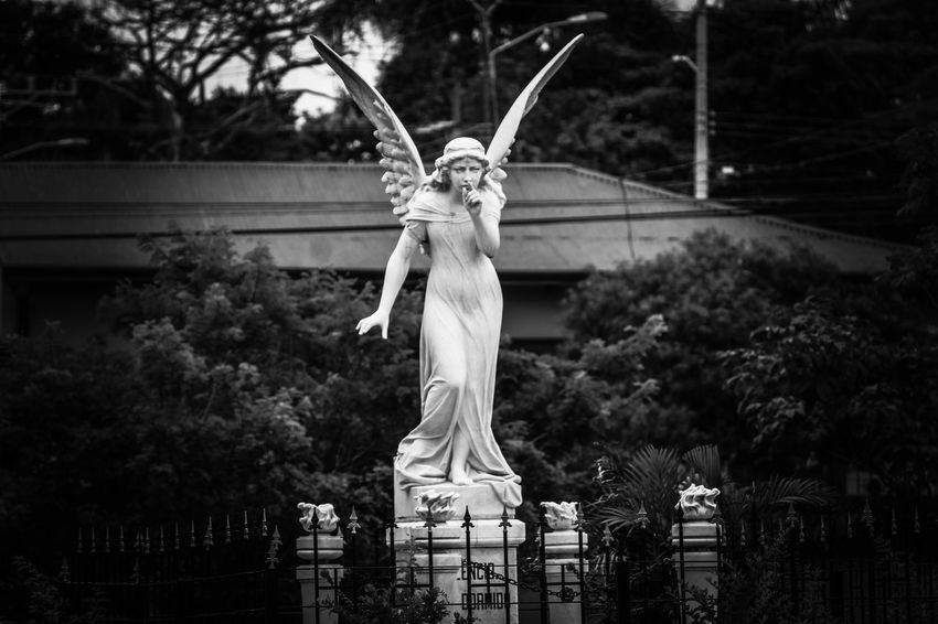 shhh Costa Rica Playing With Filters Heredia, Costa Rica Barva Walking Around Taking Pictures Walking Around Black And White Religious Figure Streetphotography Outdoors Tree Statue Sculpture Sky Female Likeness Angel Art Human Representation Sculpted