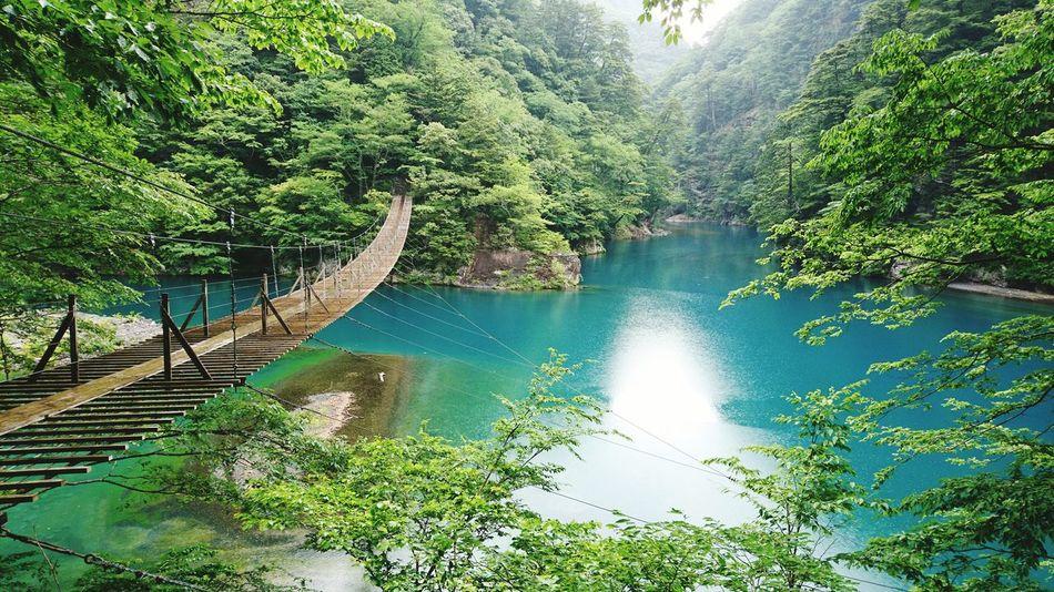 Suspension Bridge Japan Shizuoka Kawanehoncho Water Beauty In Nature