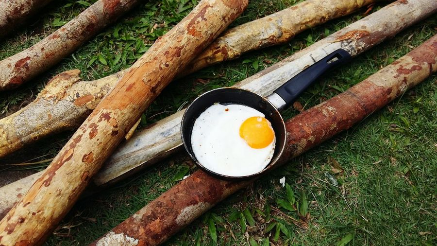 High angle view of fried egg in pan on logs