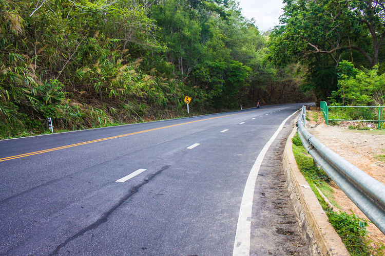 Asphalt Beauty In Nature City Day Diminishing Perspective Direction Green Color Growth Marking Nature No People Outdoors Plant Road Road Marking Sign Symbol The Way Forward Transportation Tree