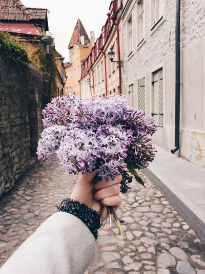 Human Hand Of Woman Holding Flowers In City