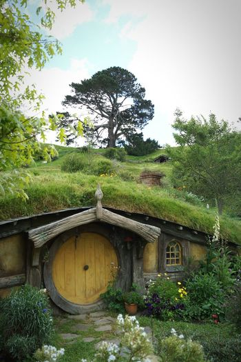 New Zealand Hobbiton Hobbit House New Zealand Impressions Lord Of The Rings EyeEm Nature Lover