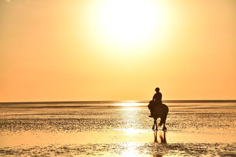 Pferdieliebe Water Sunset Sky Sea Beauty In Nature Beach Land Scenics - Nature Real People Lifestyles Orange Color Horizon Over Water Leisure Activity Horizon One Person Standing Tranquility Idyllic Sun