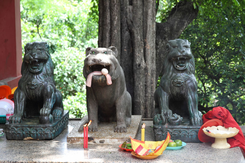 Guardians Buddhism Buddhist Temple Burning Candles Cambodia Candles Day Lion Statue No People Offerings Phnom Penh Place Of Worship Religion Sculpture Statue Tree Tree Trunk Wat Phnom Cambodia