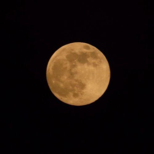 The Purist (no Edit, No Filter) The Moon Now Mira La Luna! Supermoon 2013