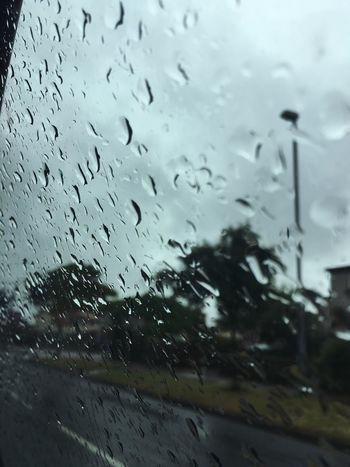 Wet Rain Transparent Drop Glass - Material Window Rainy Season RainDrop Weather Water Glass Vehicle Interior Car No People Land Vehicle Car Interior Windshield Droplet Indoors  Close-up