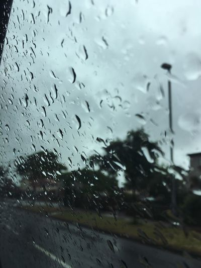 Wet Rain Transparent Drop Glass - Material Window Rainy Season RainDrop Weather Water Glass Vehicle Interior Car No People Land Vehicle Car Interior Windshield Droplet Indoors  Close-up