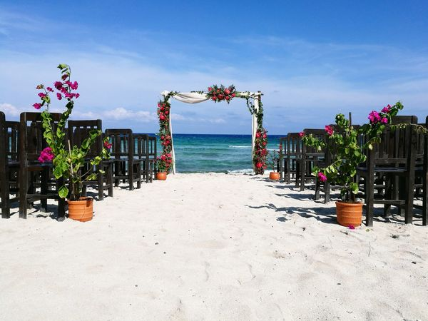 Beach Sand Sea Water Day Sky Summer Outdoors Tree Nature Beauty In Nature No People Flower Beach Wedding Wedding Decoration Floral Arrangment Gazebo On The Beach Sand & Sea Caribbean Beach Ceremony Gazebo And Nature Beauty In Nature Riviera Maya Flowers, Nature And Beauty Plant