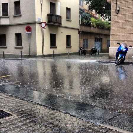 Pluja d'agost #summer #rain #wakeuppics 10likes Wakeuppics Summer Rain