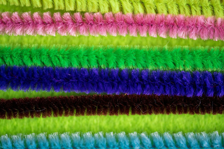 Full frame shot of multi colored plants